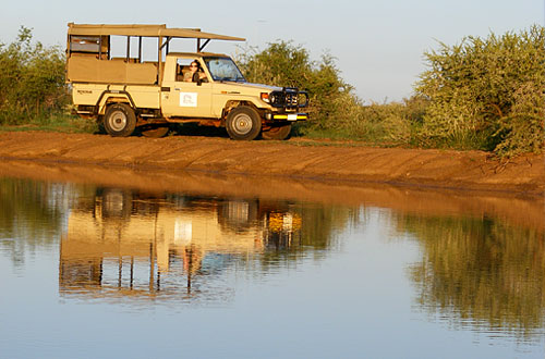 Game Drives Waterhole Black Rhino Game Lodge Pilanesberg Game Park Black Rhino Private Game Reserve